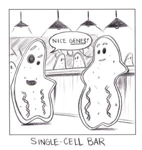 Single_CellSm